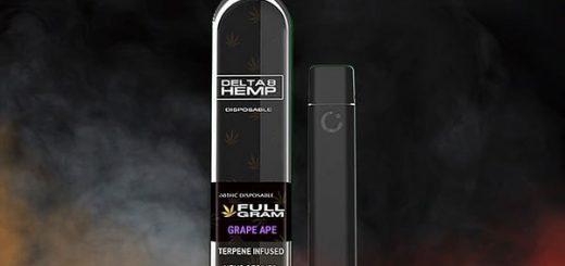 Delta 8 THC Disposable Vape Pen Review